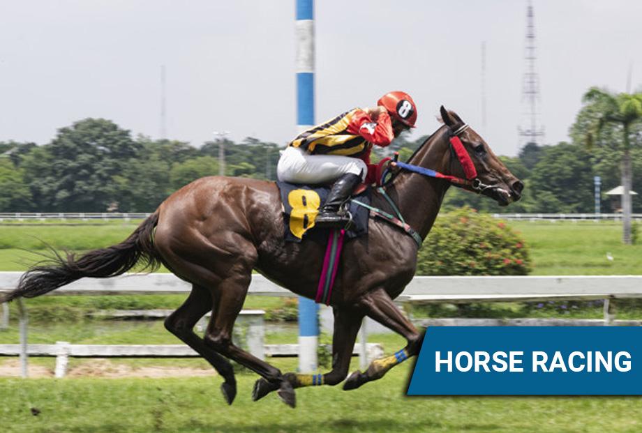 singapore pools horse racing