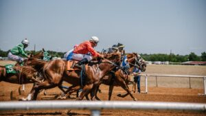 Horse race cards and tips